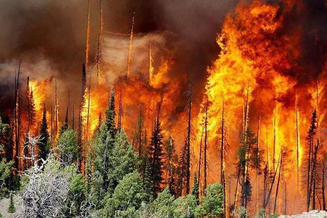江西:1天发生2起森林火灾 初判过火面积共150亩