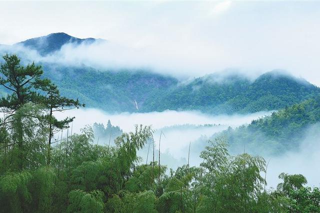 江西自然保護區生態問題整改進展順利 完成率63.7%
