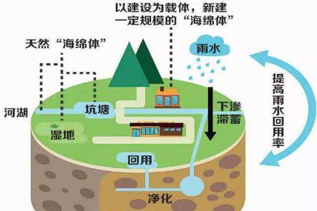 2021年力争江西省海绵产业实现千亿
