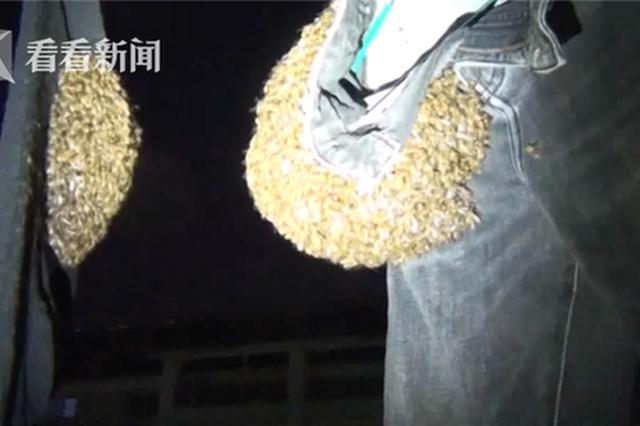 牛仔裤上突然出现千只蜜蜂 大妈直呼太吓人了
