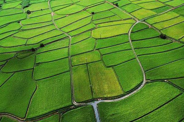 江西省高标准农田建设获国务院督查激励