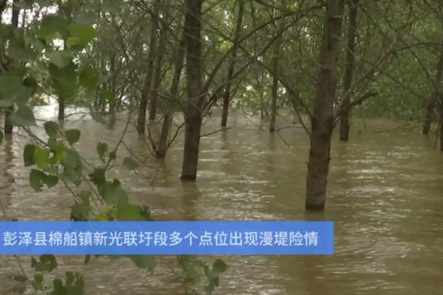彭泽:江中小镇漫堤 军民一心冒雨抢险
