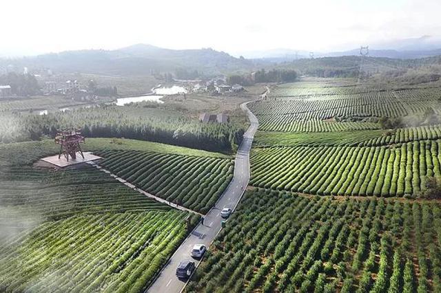 """萍乡""""穷山沟""""靠绿水青山变身旅游目的地"""