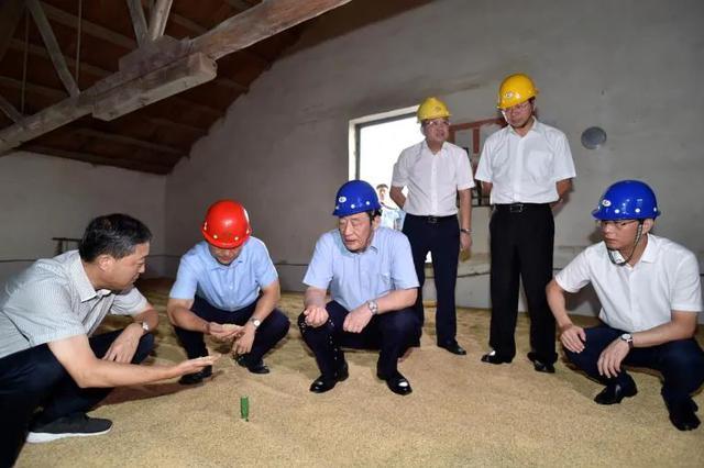 刘奇:牢牢守住粮食能源安全生命线