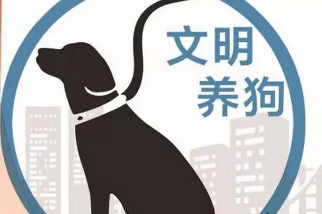 南昌红谷滩区市民注意!举报不文明养犬有奖励