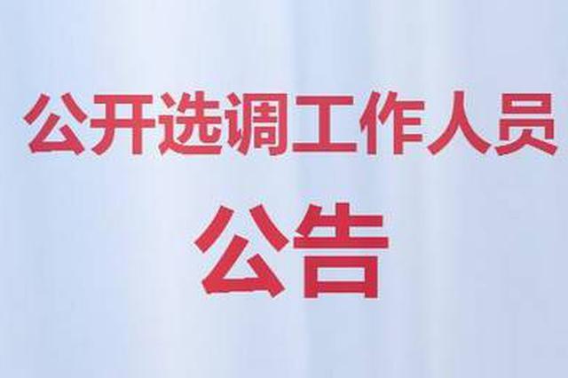 16人!彭泽县公开选调县直机关事业单位工作人员