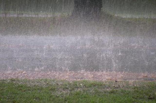 出门带好雨具!九江明后天中到大雨 局部暴雨