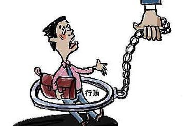 江西一公司法定代表人涉嫌行贿被查