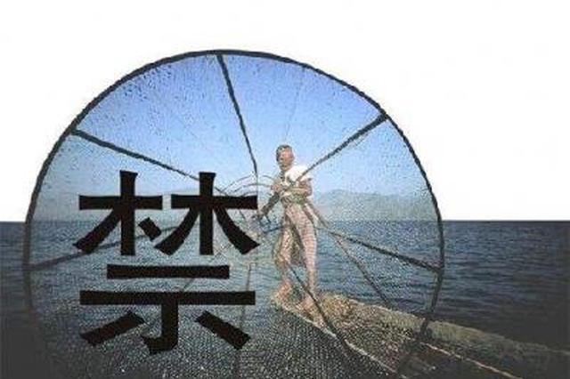 禁捕10年!崇仁县这些重点水域实施全面禁捕管理