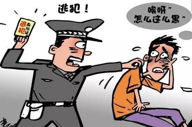 江西警方去年从泰菲越等国缉捕、劝返境外逃犯37名