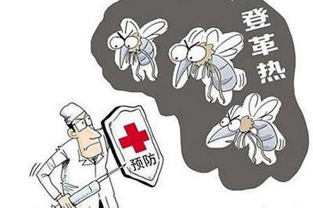 南昌疾控提醒:6月进入蚊虫活跃期谨防登革热