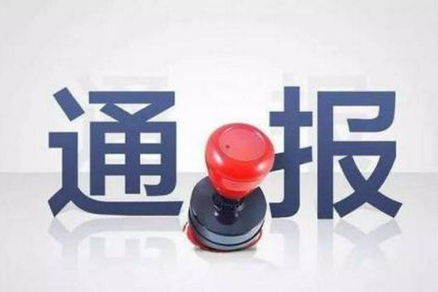 百花洲文艺公司原总经理(社长)姚雪雪一审获刑7年