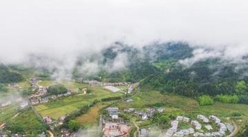 井冈山:绿染峰林云缭绕 秀美乡村入画来