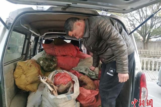 江西查获运载野生动物面包车 含470只黄鼠狼死体