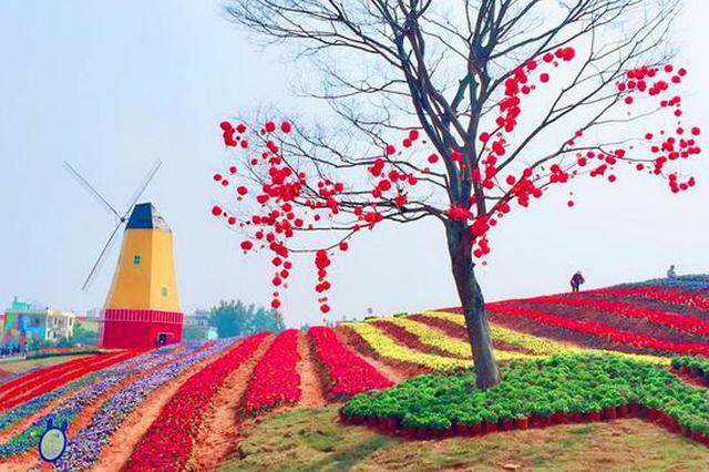 赣州经开区五彩城观光花博园试开园 吸引众多游客