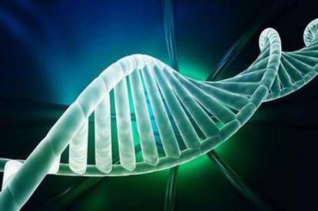 最新研究:死亡引起的基因表达变化可确定死亡时间