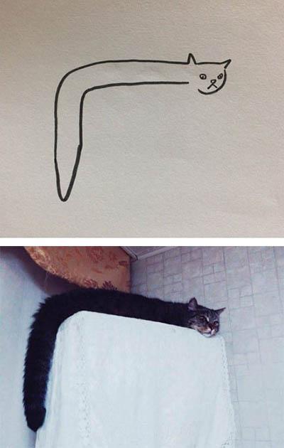 猫咪果然是流体啊