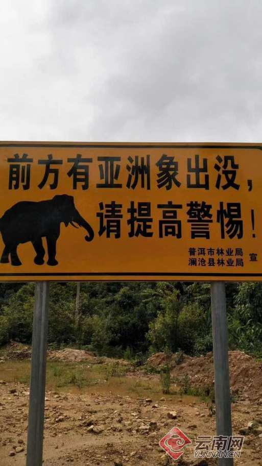 设置警示牌提示邻近职员警戒野象群