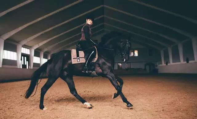 一位英国骑手的7个建议:学习马术你需要知道的事