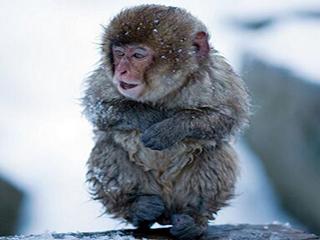 为什么会怕冷?或因为5个坏习惯