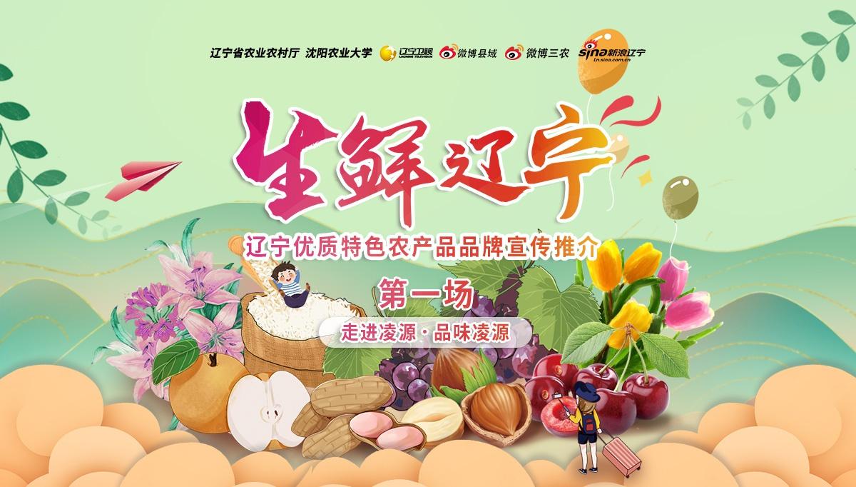 #生鮮遼寧#遼寧優質特色農產品品牌宣傳推介