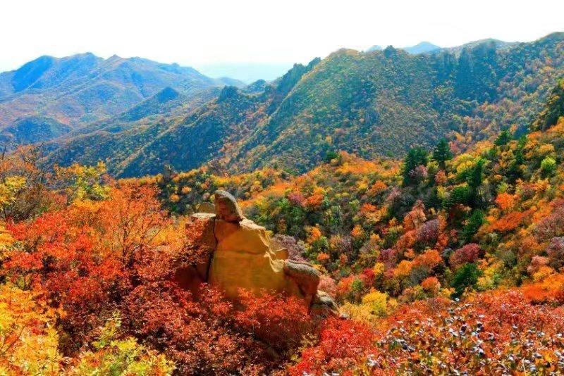学习强国8000积分免费游大黑山