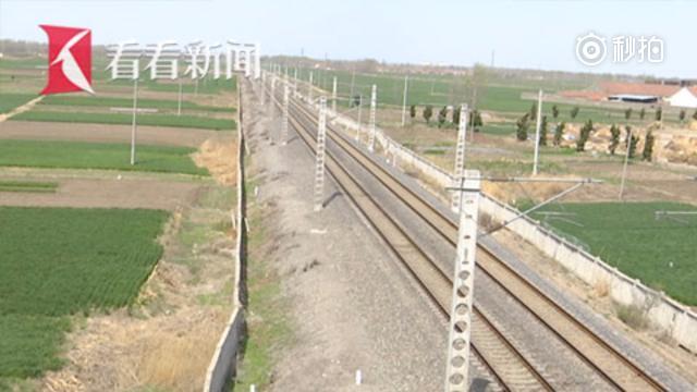 农妇为挖野菜翻过铁路防护网逼停列车 称护栏里的野菜大