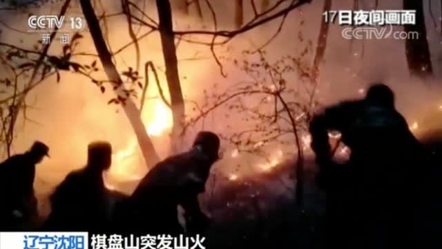 沈阳棋盘山火灾原因:村民焚烧秸秆引发