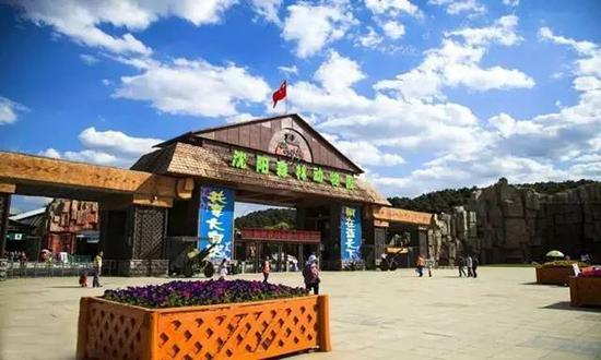 桃花▼   南湖公园,北陵公园,丹东河口…      长白岛森林公园