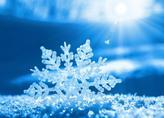 雪花提前落 正月十五不用雪打灯