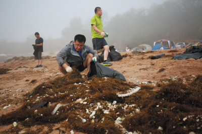 工作人员在清理岸边海藻。