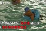 孩子游泳溺水绝望挣扎 家长竟浑然不知
