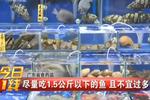 提醒——吃深海鱼小心雪卡毒素