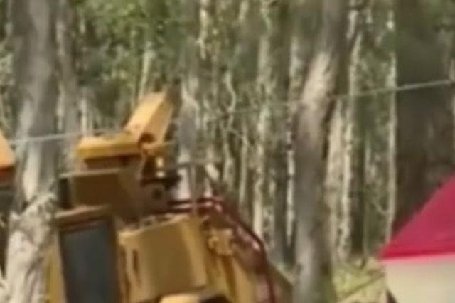 54岁农民帮邻居清理车道 不慎跌入碎木机当场惨死