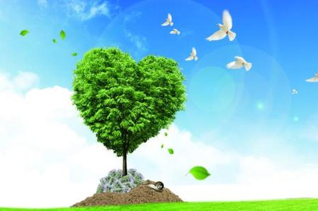 沈阳和平环保志愿者服务队开展节能宣传服务活动