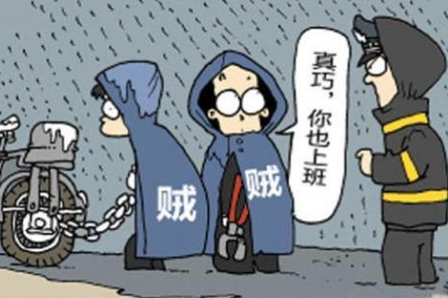 大写的服 2名窃贼偷监控设备安在自己家防窃贼