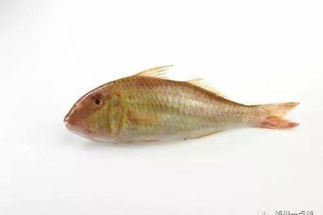 2名男子电捕到1.1两小鱼致其死亡 被判3年罚2千