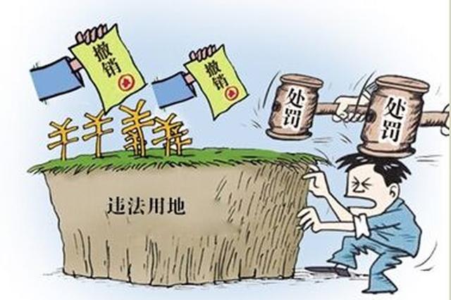 东北三省5年来立案查处违法违规用地2479件