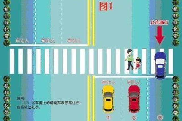 沈阳多名司机被罚款200元只因斑马线前这样避让行人