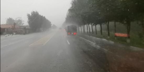 黑山暴雨大树砸中车辆 消防紧急