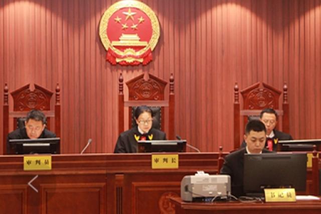 """辽宁法院邀请代表委员开展""""六个一""""活动"""