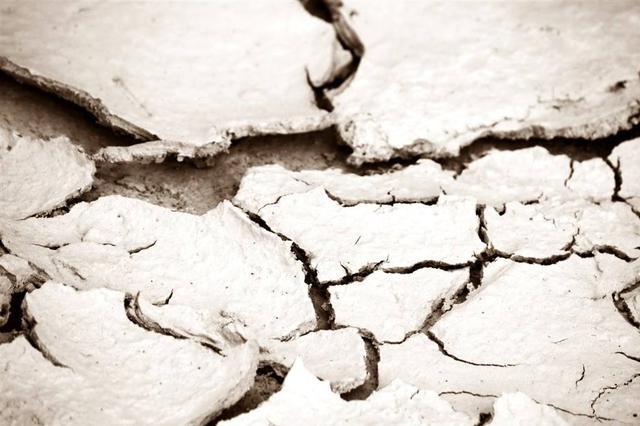 降水不解渴 辽宁作物受旱面积翻倍