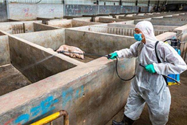 辽宁省锦州市、盘锦市发生非洲猪瘟疫情