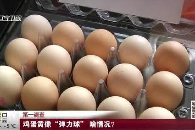 """大连:鸡蛋黄像""""弹力球""""  啥情况?"""