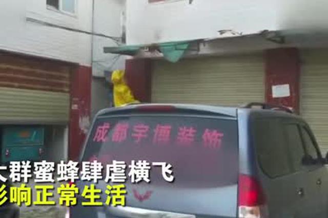 成都民房前惊现马蜂窝影响市民生活 消防员火攻灭蜂