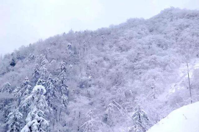 辽宁多地迎降雪 铁路部门加大运力保旅客返程顺畅
