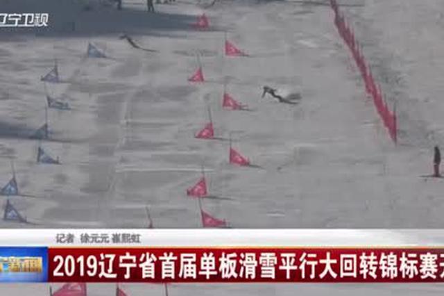 2019辽宁省首届单板滑雪平行大回转锦标赛开赛