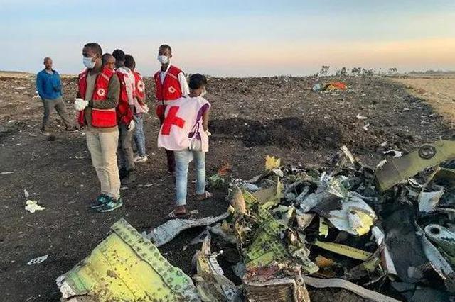 埃航客机最后6分钟状态曝光 飞机在农田撞出深坑(图)