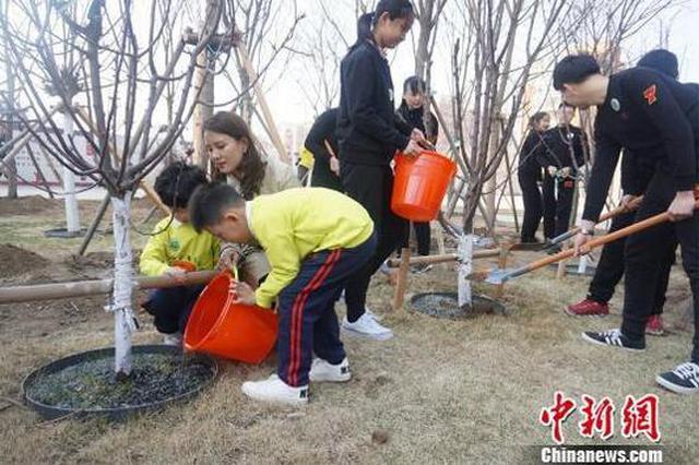 """沈阳511所学校30万名师生共同植树播种""""绿色"""""""