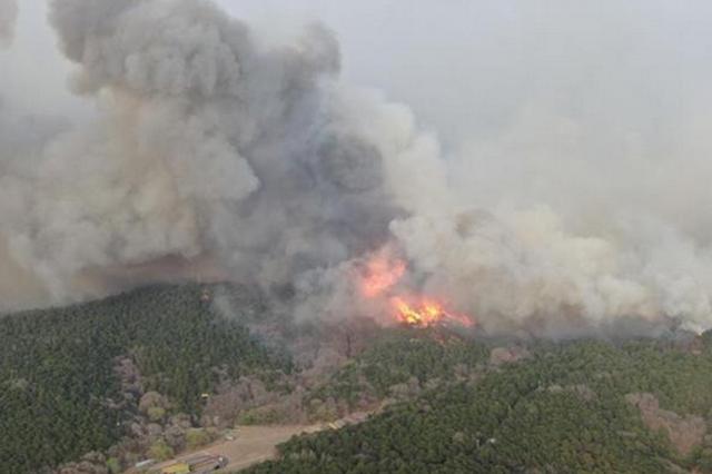 辽宁省公安机关依法严厉打击处理一批引发山火肇事者